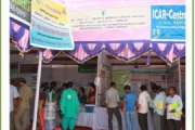 Exhibition at ICAR-CRRI